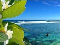 Résultat du bac 2013 : une tahitienne obtient 20,447 de moyenne !