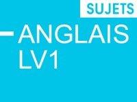 Bac 2014 : Les sujets d'anglais LV1 du bac général